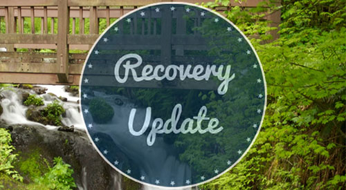 Recovery Update Issue 4 is here!