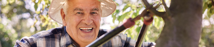 banner: a close shot of an old man who smiles when fixing branches of a tree